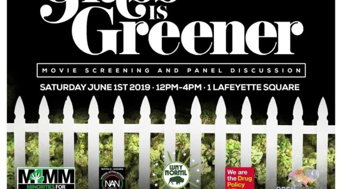 Around BuffaLowe: Grass Is Greener Movie Screening + Cannabis Panel Discussion 6.1.19 [Event]